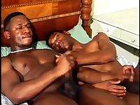 Naughty Black Guys Hot Stuffing
